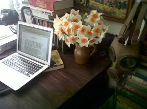 Anya workspace