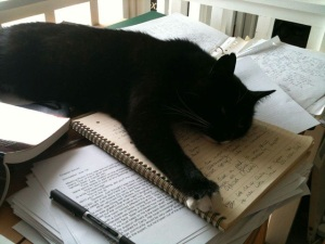The Cat and the Edits