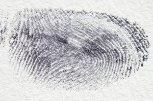 fingerprint-255900_1280